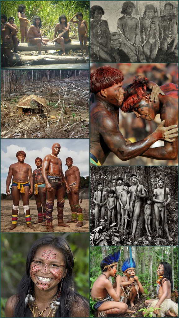 Today, the Brazilian Department of Isolated Indians is attempting to map out the extent of uncontacted peoples' lands in order to better protect them from intrusion. Over the last eight years since the book was written, the official number of uncontacted tribes has increased from 17 to 26. Javari Valley alone hosts eight distinct ethnic groups, making it the largest concentration of uncontacted tribes in the world.